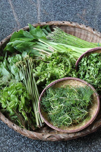 wild herbs & veggies たくさんの山菜。田舎の母の手料理が食べたくなる。