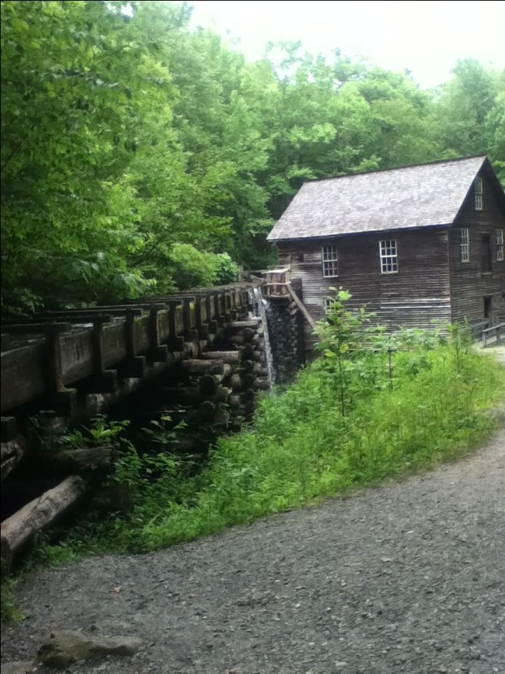 51 best great smokey mountains images on pinterest for Privately owned cabins in the smoky mountains