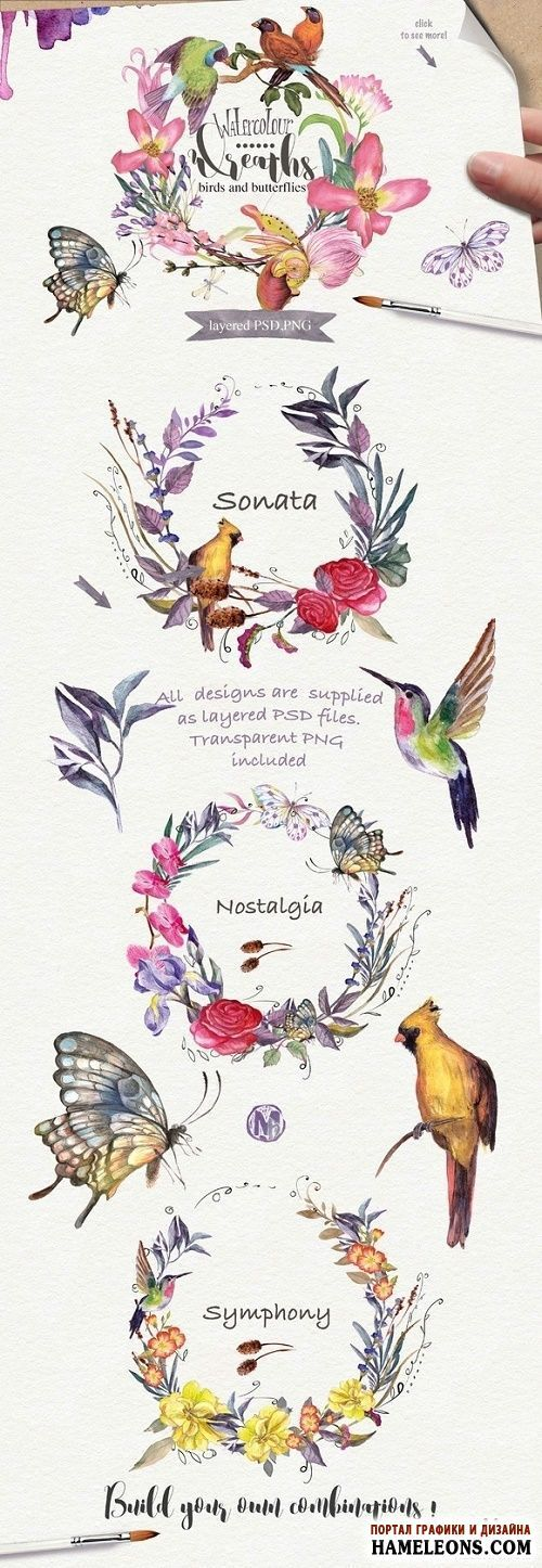 Акварельные цветочные венки, птицы, бабочки - исходники для Фотошоп   Watercolor floral wreaths