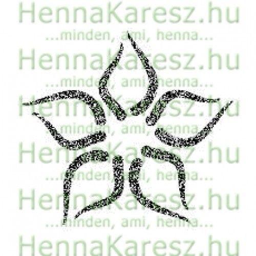 henna-testfesto-airbrush-sablon-46-500x500.jpg (500×500)