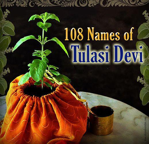 108 Names of Tulasi devi - ISKCON Desire Tree - Devotee Network
