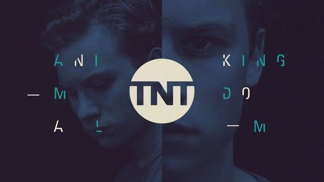 A sample of the 2016 TNT rebrand graphics we recently completed.