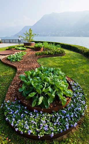 By Barbara NegrettiOrganic Shape, Shape Inspiration, Luxury House, Landscaping Design, Shape Gardens, Lakes Como, Lake Como Italy, Composition Inspiration, Garden Beds