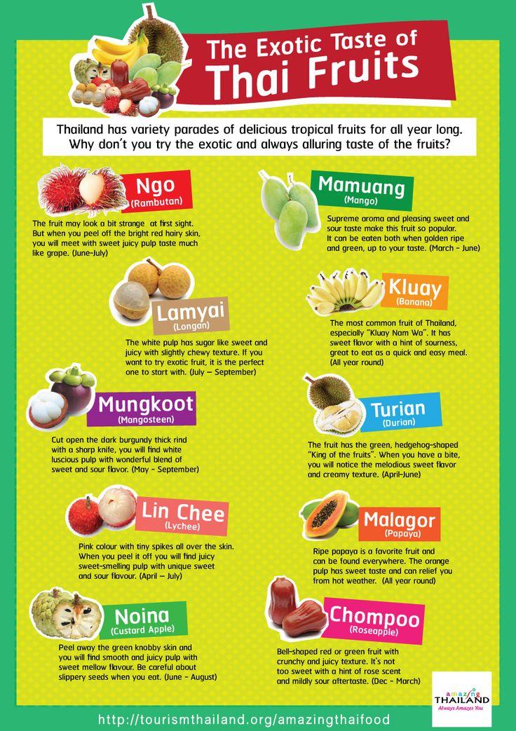Tourism Authority of Thailand showcases Thai Food to the world through ten cool…