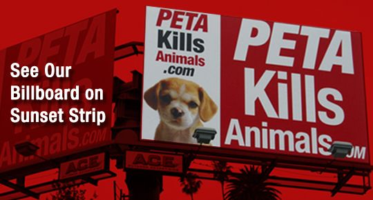 peta animal rights and their objectives People for ethical treatment of animals (peta), an animal rights objectives of animals (peta) and their campaign to.