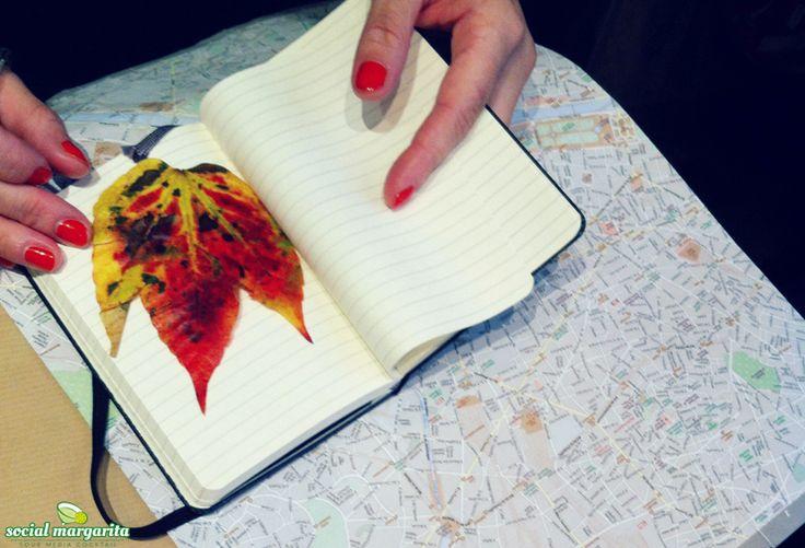 Pinterest i viaggi e i nuovi Place Pins: un amore a prima vista!