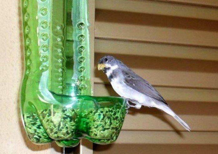une bouteille en plastique verte transformée en mangeoire, idée comment fabriquer mangeoire oiseaux