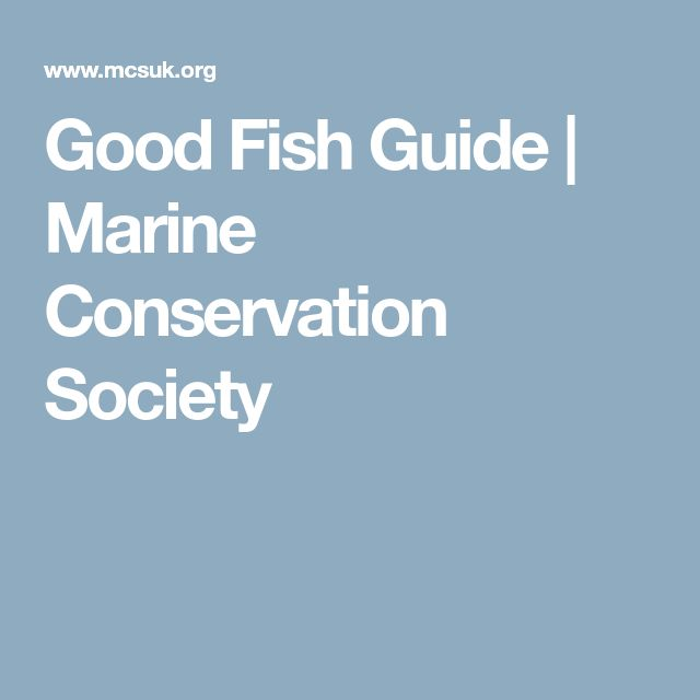 Good Fish Guide | Marine Conservation Society