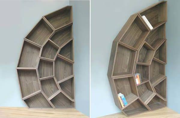 Spider Web Bookshelf