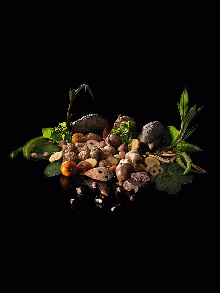 The vegetarian tasting menu. D.O.M.: Rediscovering Brazilian Ingredients. Alex Atala.