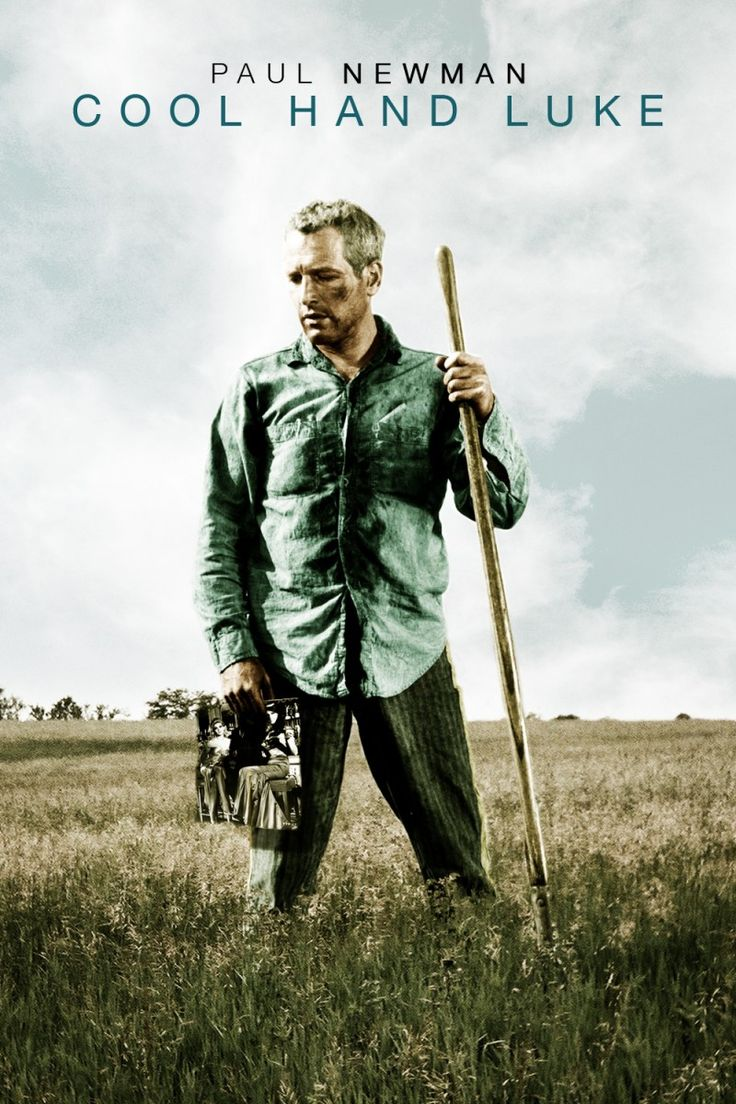 an analysis of the movie cool hand luke In cool hand luke, the movie begins with the word, violation this paper will provide a synopsis of the movie and character analysis of cool hand luke.