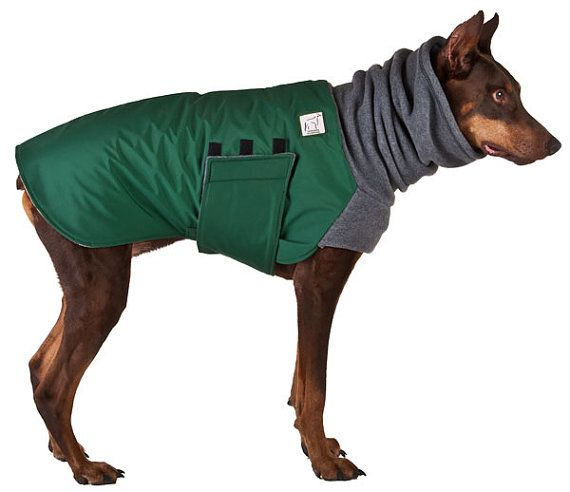 Canvas Raincoat For Small Dog