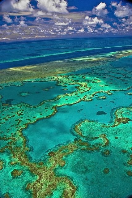 Hardy Reef on the Great Barrier Reef, Whitsundays, Queensland, Australia