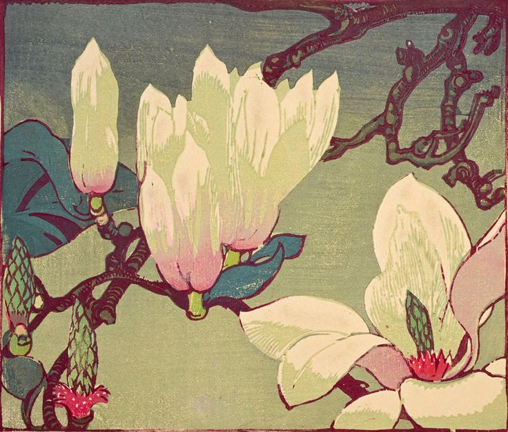 Magnolia  by Mabel Royds (1874-1941) - woodcut