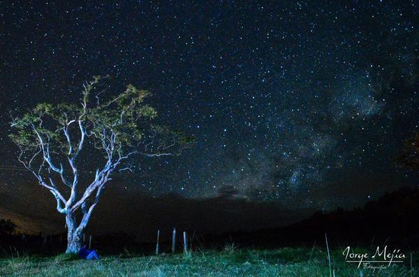 Luvia de estrellas en Vélez