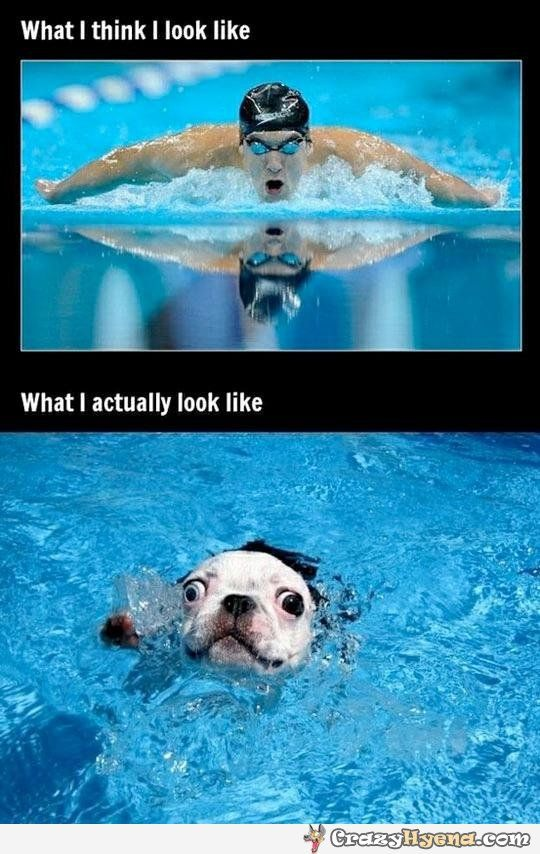 No.. I'm pretty sure I look like the dog. But still, it feels great!