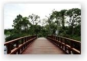 МУЗЕЙ И САДЫ МОРИКАМИ  — оазис японской культуры на юге Флориды  Флорида, как правило, ассоциируется с апельсинами, пальмами, бесконечными пляжами и солнцем. И не многие вспоминают о временах, когда колонизаторы и землеторговцы конкурировали за распределение земли на её территории. Особенно этим ознаменовалось начало двадцатого столетия.