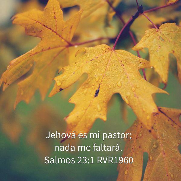 Nada me faltará - No es que tengamos todo, sino que él se convierte en nuestro todo.