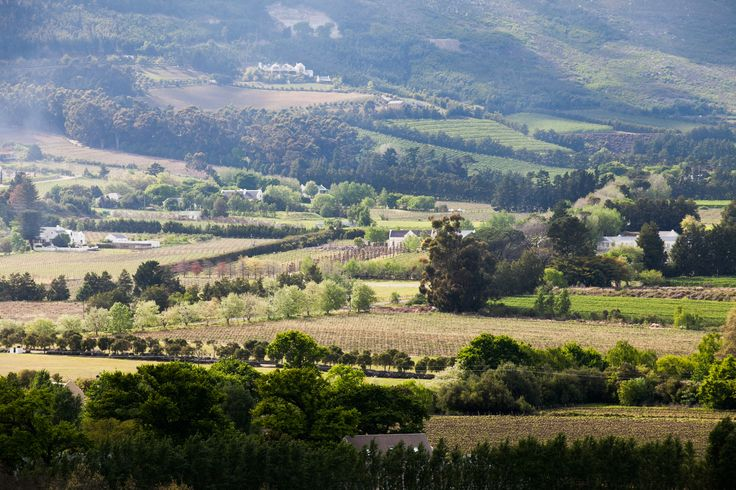 Mont Rochelle, #Franschhoek #SouthAfrica #vineyards #luxurytravel #virginlimitededition