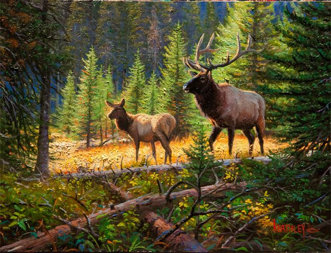 Mystery of the Elk by Mark Keathley ~ forest pines