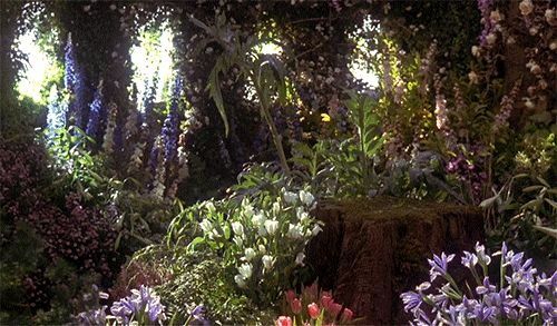 'From the valley to the Stars' } 'The Secret Garden' ~ 1993 > Source: RoseyDoux