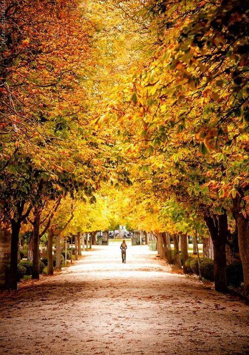 Kifissia, Athens in autumn