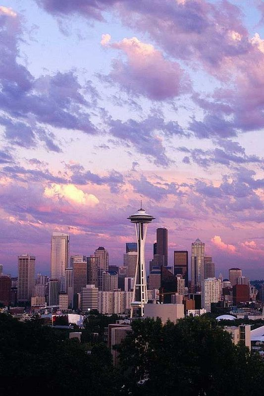 An awesome view of Seattle city skyline