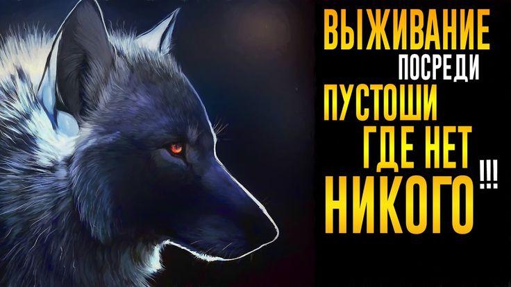 ОДИНОКИЙ ВОЛК В ПУСТОШИ!