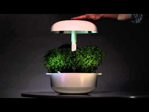 Plantui Plantation gives the smart garden room to grow