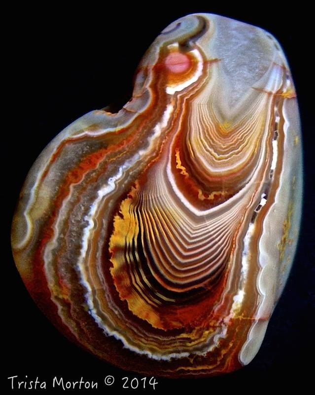 "Lake Superior agate. Minnesota, USA -  ""Drama Queen"""