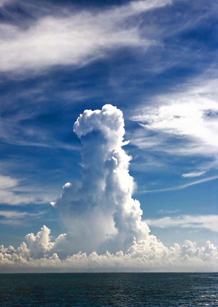 Cumulonimbus-incus | Clouds | Pinterest