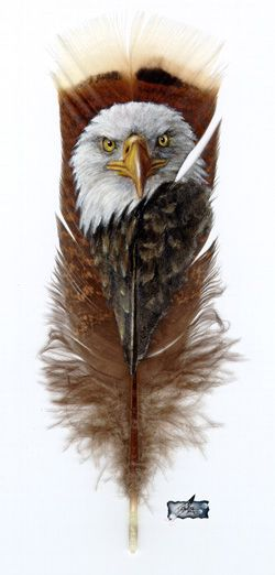 native american eagle images - Google Search