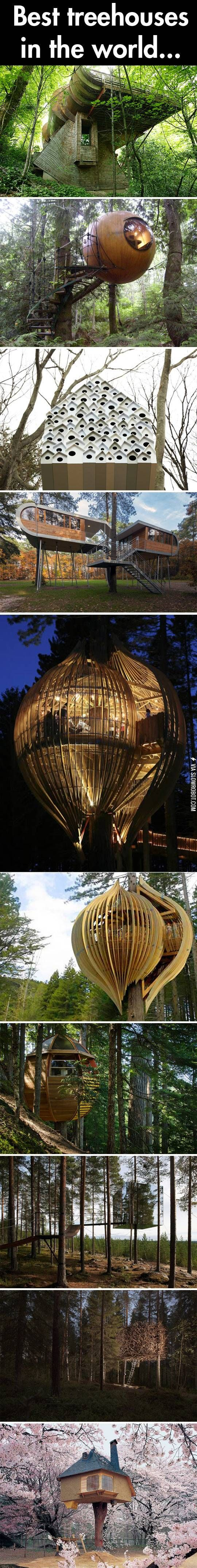 Best treehouses in the world.
