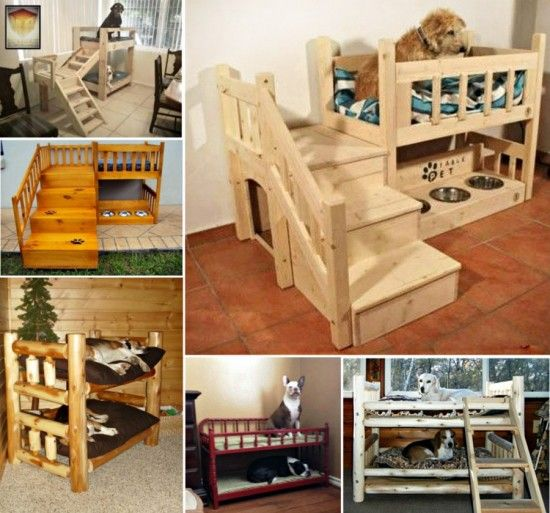 Dog Bunk Beds... maybe not Bunk Beds but each have their own structure where their bowls can sit too! And we can hang their stocking there for xmas!!!!
