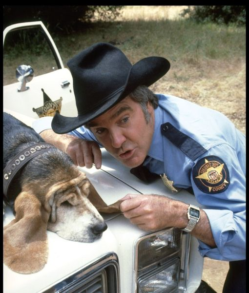 Roscoe P: Rosco P  Coltrane (@cootertex) – Quotes of the Day
