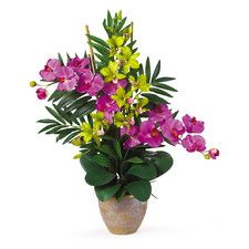 Double Phalaenopsis and Dendrobium Silk Orchid Flowers | Nearly Natural
