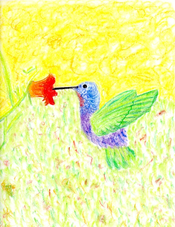 Hummingbird: Art, Prints, Pretty, Hummingbirds