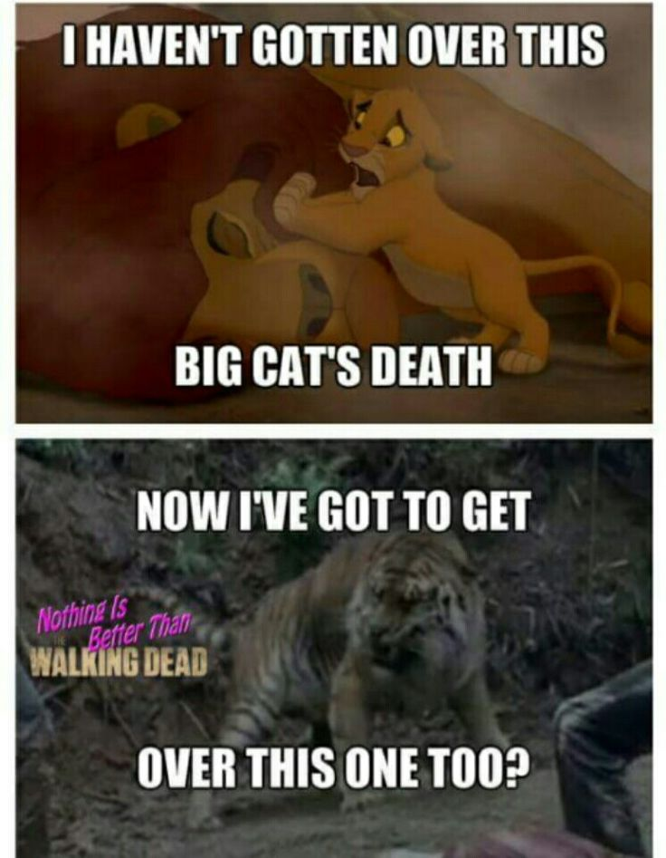 True mutherfuckn story #twd