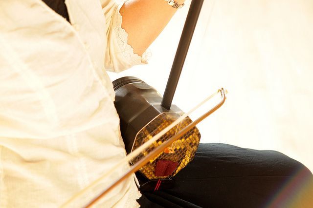 Mimi Jong - a musician plays the Erhu  New Sound Doc 1 by jvanproductions, via Flickr