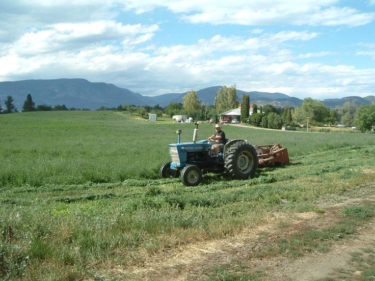 20050820 - Hay time at McMillan Farms