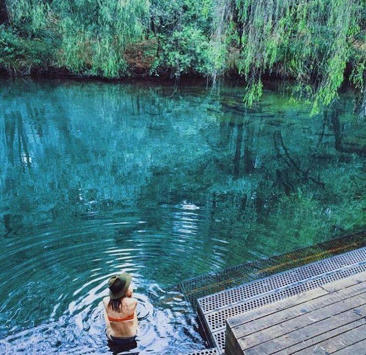 Honeymoon Pool, Collie