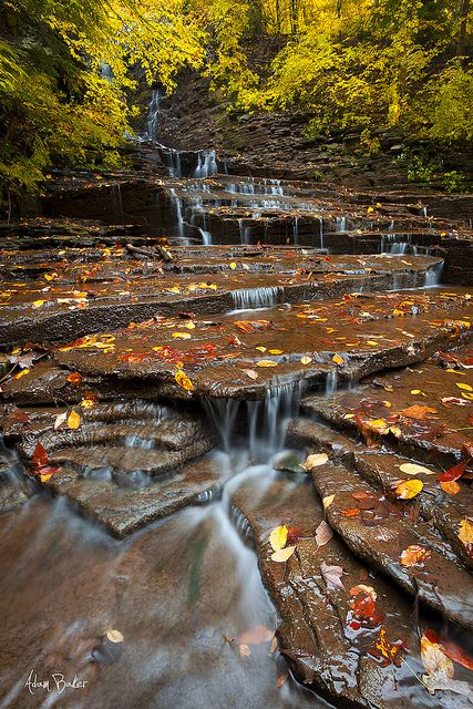 17 best images about ithaca is gorges on pinterest lakes for Ithaca t shirt printing