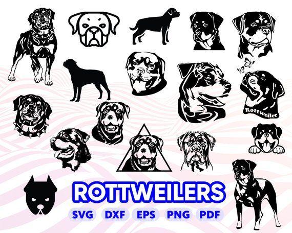 Rottweilers Svg Rottweiler Silhouette Rottweiler Clipart