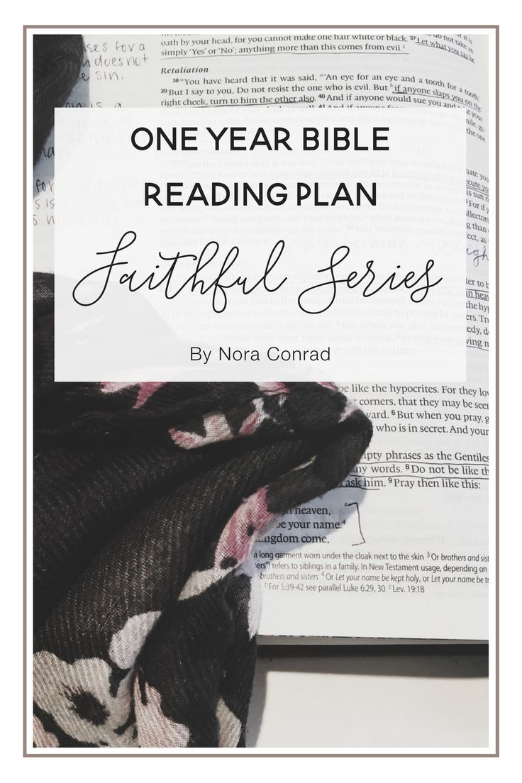 17+ best ideas about One Year Bible on Pinterest | Bible ...