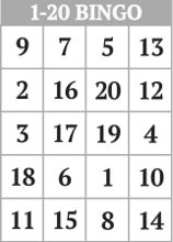 1-20 Number Bingo Cards </br>Printable and Mobile