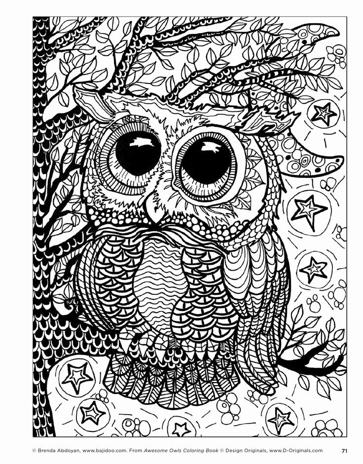 Owl Coloring Book For Adults Best Of 259 Best Kleurplaten Owls Images On Pinterest Owl Coloring Pages Skull Coloring Pages Coloring Books