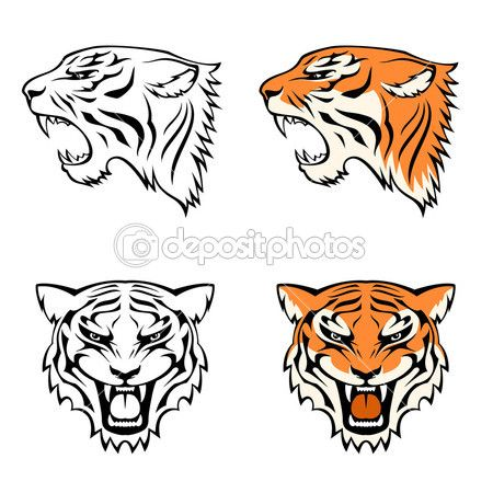 Simple Tiger Face Drawing Traffic Club