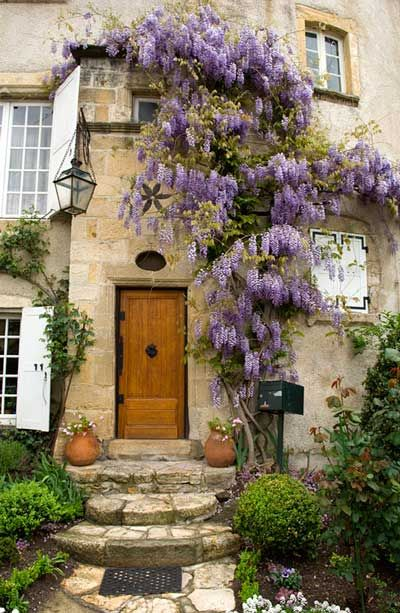 Crazy to grow wisteria on house, but wowThe Doors, Modern Gardens Design, Wisteria, Front Doors, Gardens Spaces, Windows, House, Entrance, Purple Flower