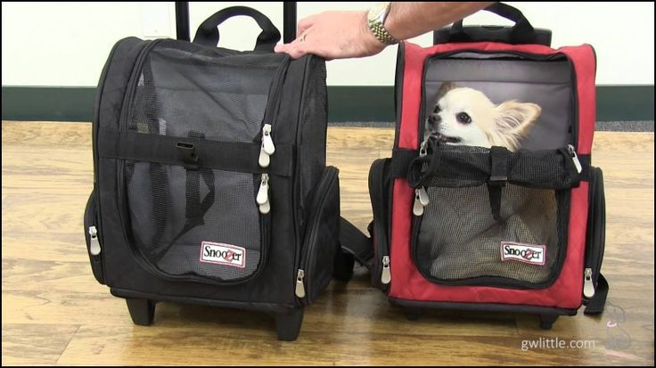 Airline Approved Pet Carriers with Wheels