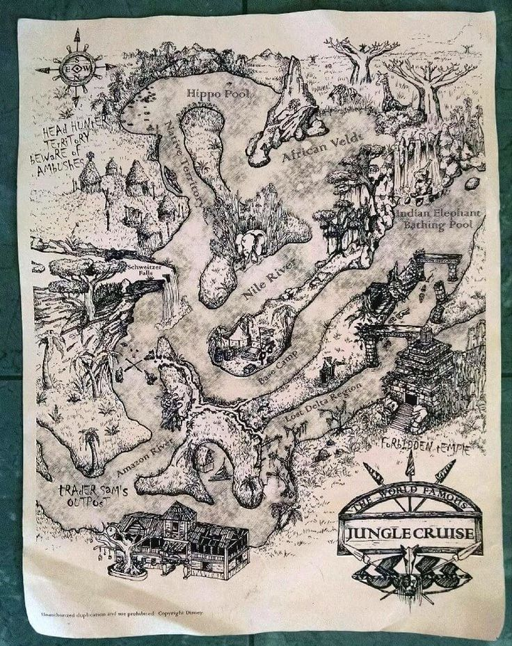 Did you know that you can often get a free souvenir map of the Jungle Cruise in Adventureland at Disney World. Just ask a Cast Member at the loading area.